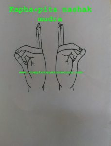 Kapha and Pitta nashak mudra