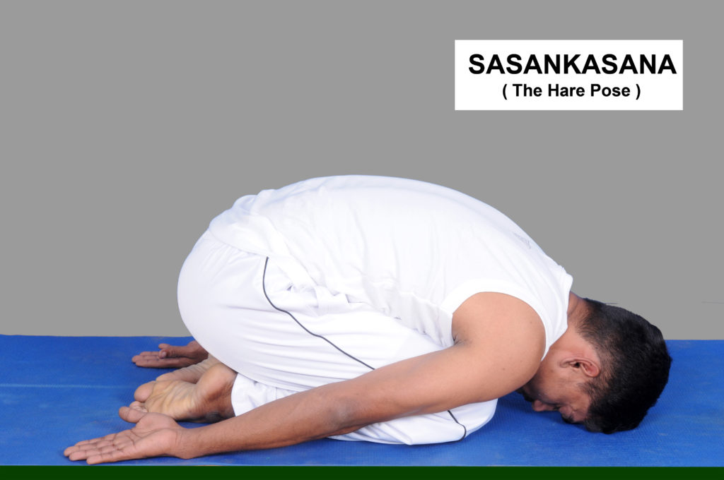 Sasankasana how to do