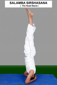 SALAMBA SIRSASANA, Benefits, How to do Steps