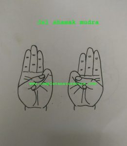 Mudra For Acid Reflux or GERD