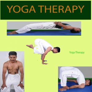 """My New Book """"Yoga Therapy"""""""