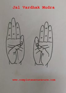 Mudra for dry hair